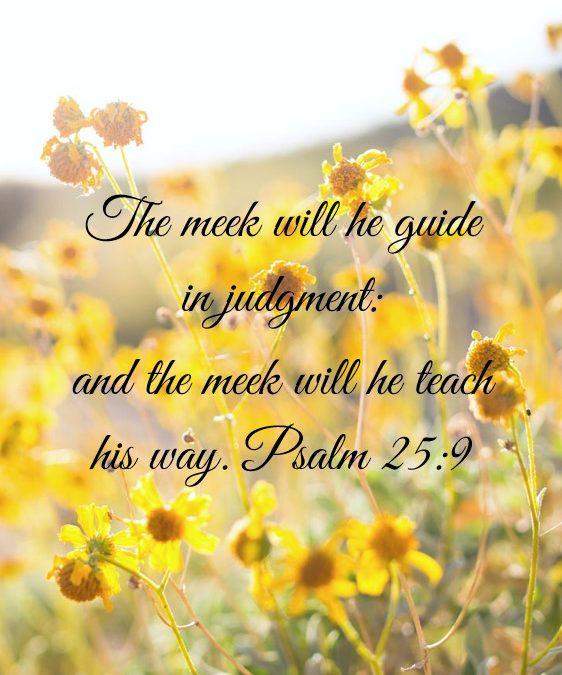Trusting God: Week 4 – Guidance